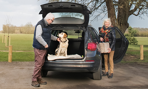 Car with a Labrador in the boot and a family around